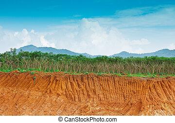 terrein, farm., menselijk, onder, cassave, erosie, voorwaarde, klip