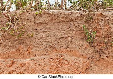 terrein, gras, structuur