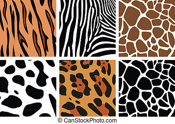 texturen, dier huid