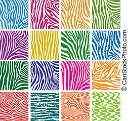 texturen, set, kleurrijke, vector, zebra vellen