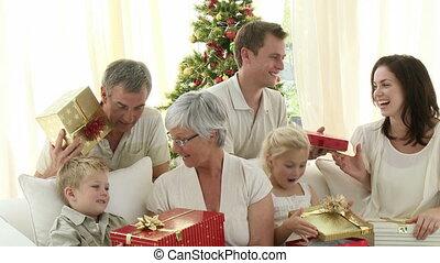thuis, kerstmis, het houden hedenen, gezin