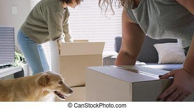 thuis, paar, lesbische , volgende, hun, kaukasisch, aanhalen, dog, nieuw, verhuisdozen