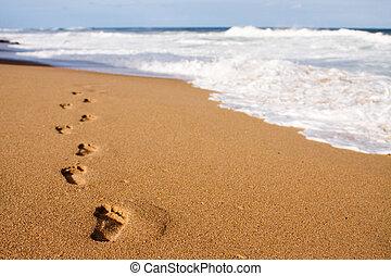 toonaangevend, voetafdrukken, zee