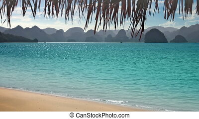 tropische , bergen, strand