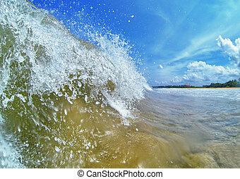 tropische , groot, strand, golf