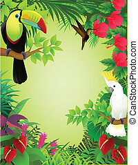 tropische , jungle, vogel