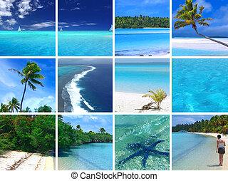 tropische , montage