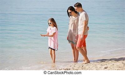tropische vakantie, landscape, mooi, strand, het genieten van, zomer, gezin