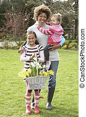 tuin, daffodils, vasthouden, moeder, mand, kinderen
