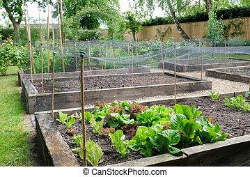 tuin, groente, groentes, uk, homegrown, lappen