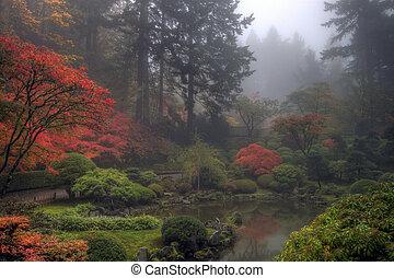 tuin japanner, morgen, herfst, nevelig, een