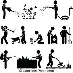 tuinieren, werken, arbeider, tuinman