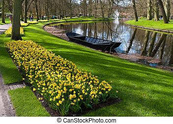 tulp, keukenhof, nederland, tuin