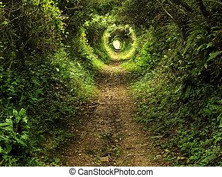 tunnel, sprookjesbos, steegjes