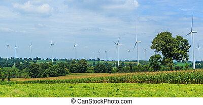 turbine, bescherming, -, wind, natuur
