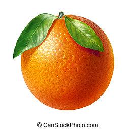 twee, bladeren, achtergrond., fruit, sinaasappel, fris, witte