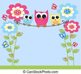 uilen, kleurrijke, drie