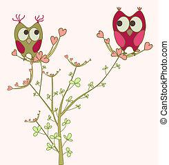 uilen, liefde, tak
