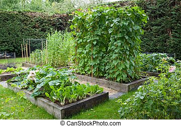 uk, tuin, engelse , lappen, groente