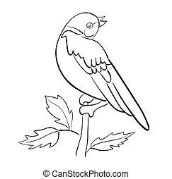 vector, silhouette, vogel, tak, zetten