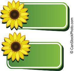 vector, stickers, zonnebloem