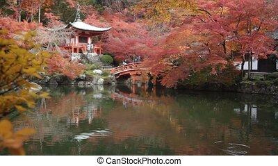 verlof, tempel, seizoen, veranderen, kleur, herfst, rood, japan