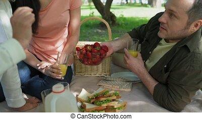 vermakelijk, park, picknick, hebben, gezin