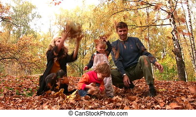 vier, bladeren, werpen, gezin