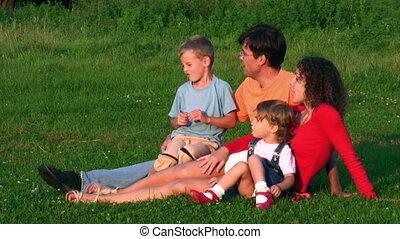 vier, gras familie