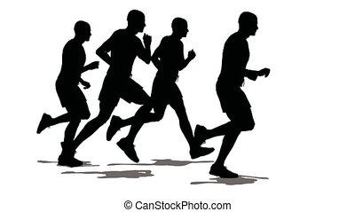 vier, mannen, sportsman, run.