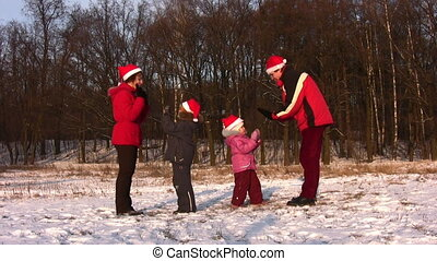 vier, park, winter, gezin, dancing
