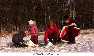 vier, park, winter, gezin, spelend