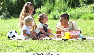 vier, picknick, gezin