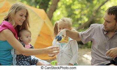 vier, picknick, vriendelijk, gezin