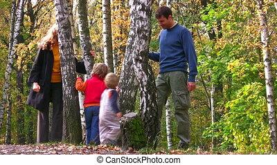 vier, wandelende, ongeveer, gezin, berk