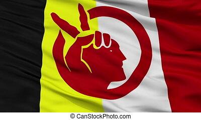 vlag, seamless, amerikaan indiaas, closeup, lus, beweging