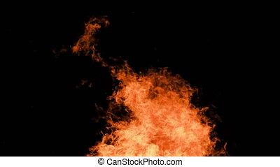 vlammen, achtergrond, black , nacht, burning, vuur, vreugdevuur
