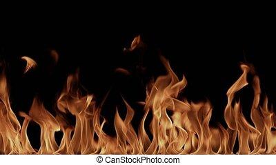vlammen, brandend, hoog, zwarte achtergrond, resolutie