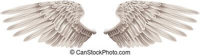 vleugels, witte