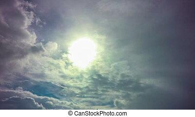 vlieg, blauwe , sky., zonnig, vliegtuig, dag