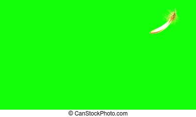 vliegen, 4k., looping., feather., seamless, groene, screen., gouden