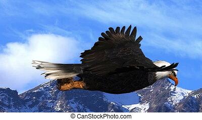 vliegen, adelaar, tegen, bergen, animatie, kaal, hemel, achtergrond