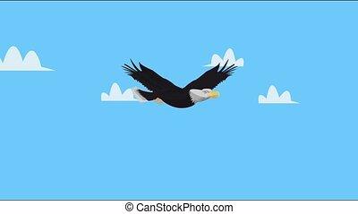 vliegen, hemel, kale adelaar