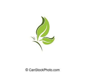 vlinder, blad, ontwerp, mal, logo, groene