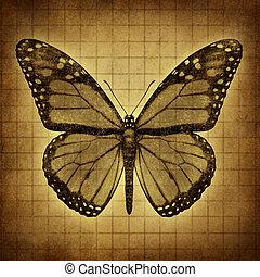 vlinder, grunge, textuur