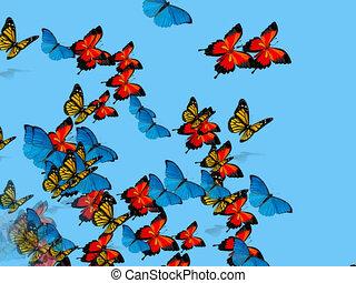 vlinder, vliegen