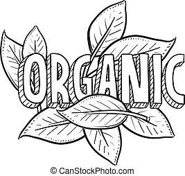 voedingsmiddelen, schets, organisch