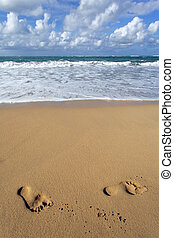 voet, strand