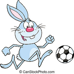 voetbal, blauwe bal, konijn