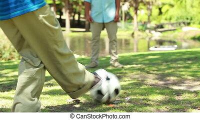 voetbal, leden, spel, gespeelde, twee, wezen, gezin